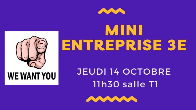 Mini Entreprise.png